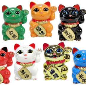 colourful cats